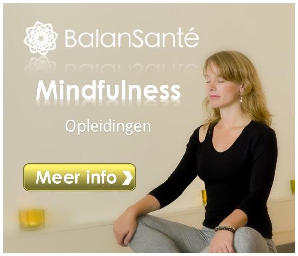 balansante mindfulness opleidingen