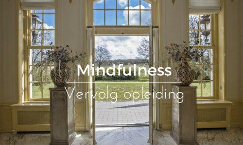 balansante mindfulness vervolg opleiding
