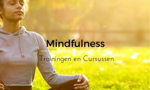 mindfulness trainingen en cursus