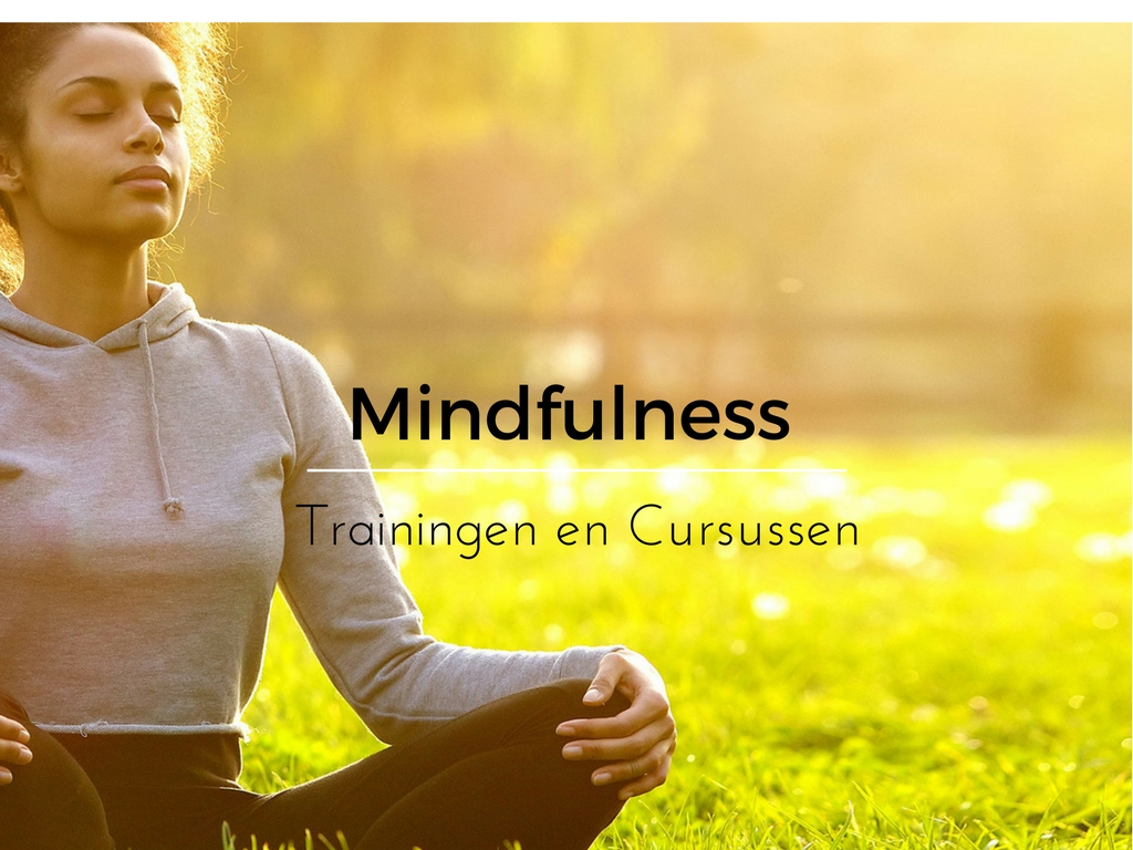 mindfulness trainingen en cursus