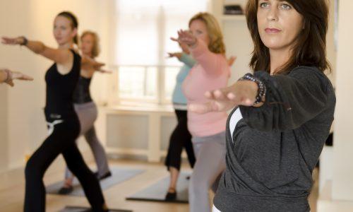 Mindful Yoga les Nieuw Vennep