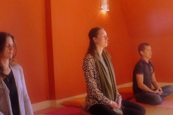 alanSante Mindfulness opleiding