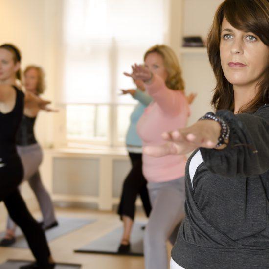 Yin Yoga en Meditatie teacher training 50 uur.